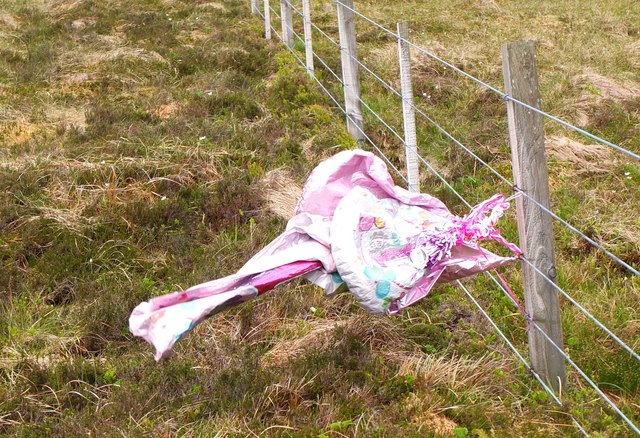 Party balloon caught on fence, Notman Law