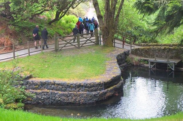 Scrape Pond, Dawyck Botanic Garden