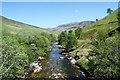 NN9071 : River Tilt upstream : Week 21