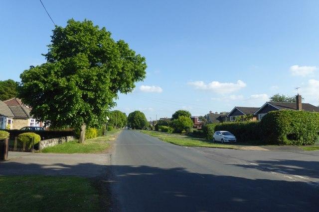 Millfield Lane