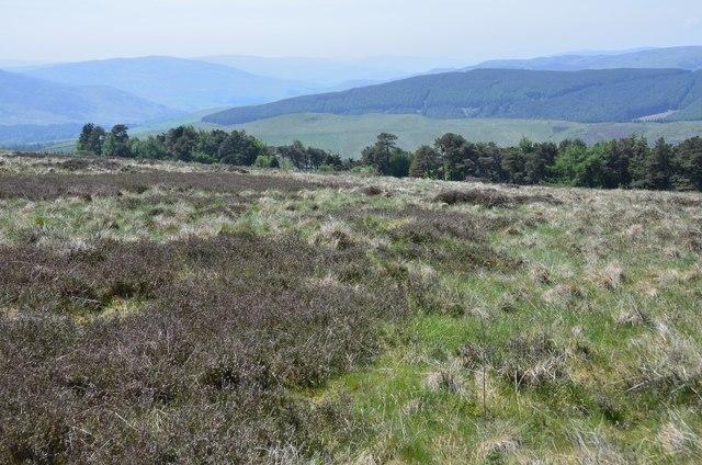 Moorland west of Broomy Law