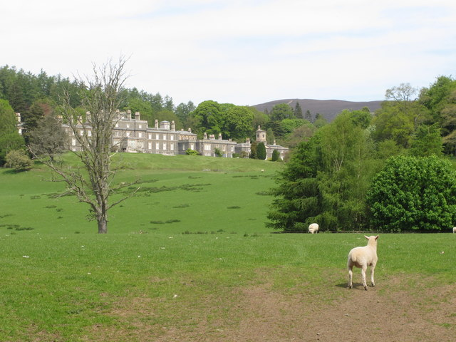 Bowhill House with lambs on estate
