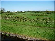 SK0003 : Farmland south of Freeths Bridge, Fishley by Christine Johnstone