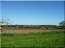 SK0003 : Bare field, north of Little Bloxwich by Christine Johnstone