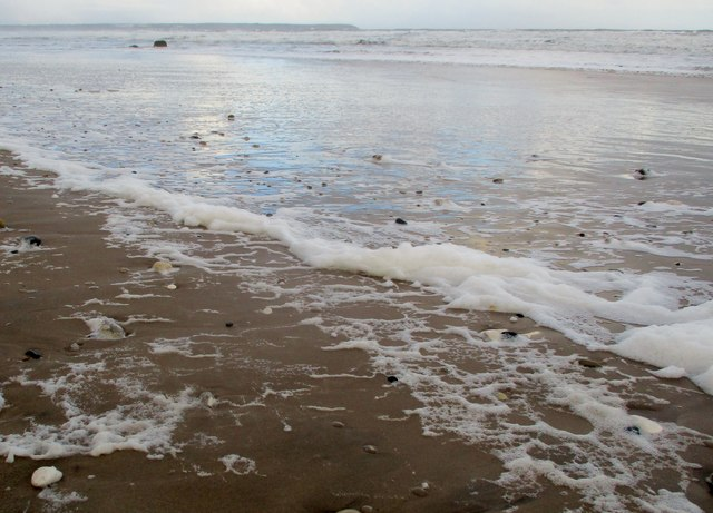 North  Sea  froth  on  Reighton  Sands