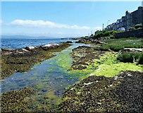 NS1055 : Kilchattan Bay - Isle of Bute by Raibeart MacAoidh