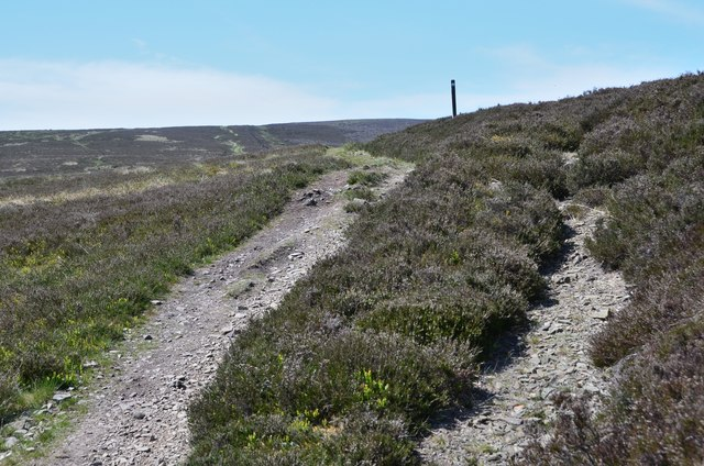 Path in the heather at Four Lords Lands