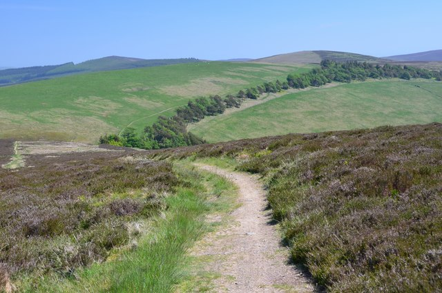 Southern Upland Way on Lucken Head