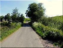 H5575 : Merchantstown Road, Merchantstown Glebe by Kenneth  Allen
