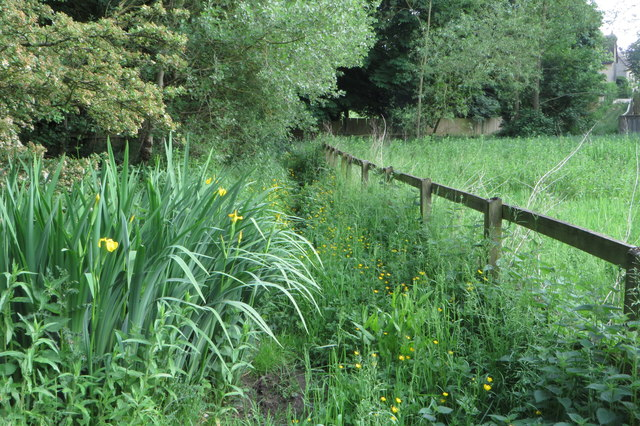 Marshy footpath towards The Green