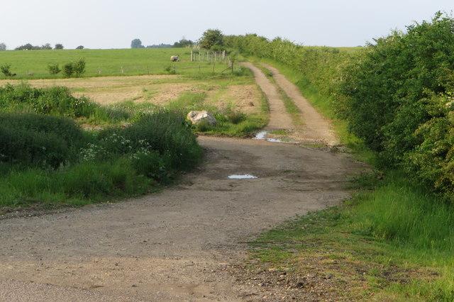 Track towards Astwick