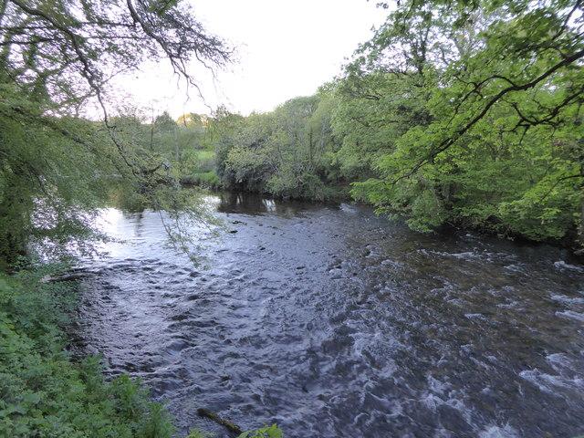River Dart at The Abbey Inn, Buckfastleigh