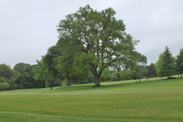 Trees at Torwoodlee Golf Course