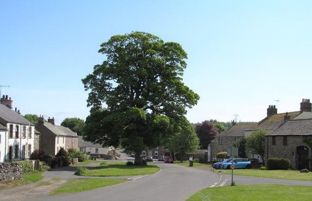 Upper green, Askham