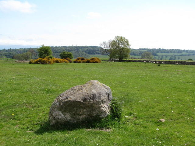 Erratic at Askham