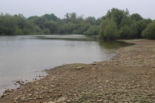 Shore of Llandegfedd Reservoir