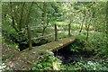 SN0410 : Footpath Bridge by Alistair Hare