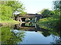 SJ9601 : Castle Bridge, from the south by Christine Johnstone