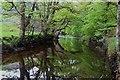 NN2002 : River Goil near Inveronich by Alan Reid