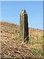 SK2968 : Guidestone, Beeley Moor by MilestoneSociety