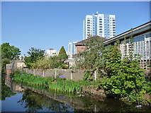 SJ9400 : Housing on the north bank of the Wyrley & Essington Canal by Christine Johnstone