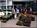 H4572 : Flowers for sale, Omagh by Kenneth  Allen