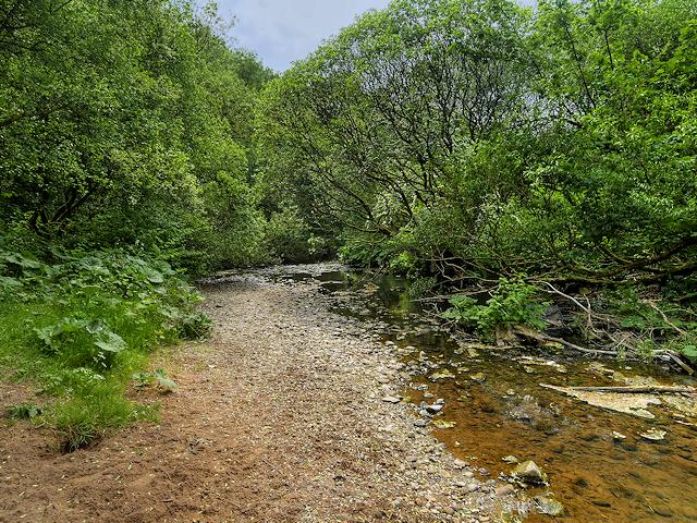 River Medlock at Medlock Vale