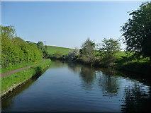 SO8690 : Staffs & Worcs Canal, just north of Swindon [Staffs] by Christine Johnstone