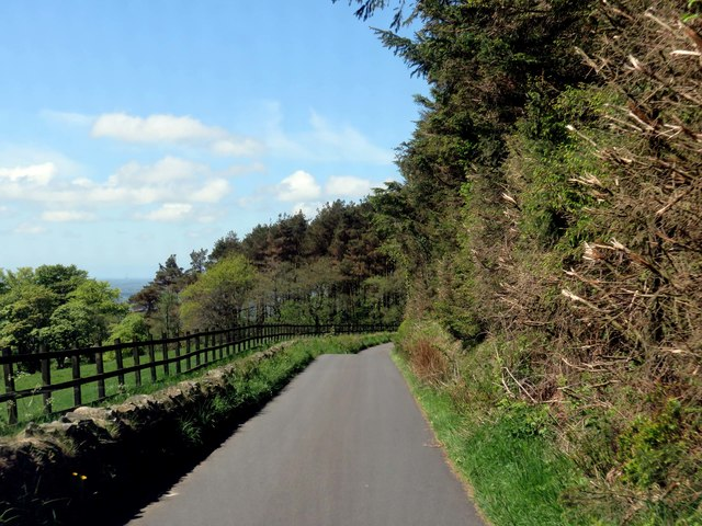 Carwags Lane by Beacon Fell Country Park