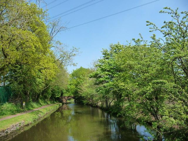 Stourbridge Canal, approaching Newtown Bridge