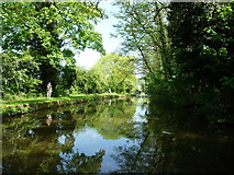 SO8785 : Walking the Monarch's Way on the Stourbridge canal by Christine Johnstone