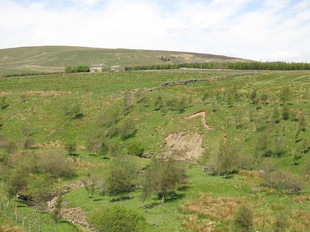 The valley of Wellhope Burn below Woodside