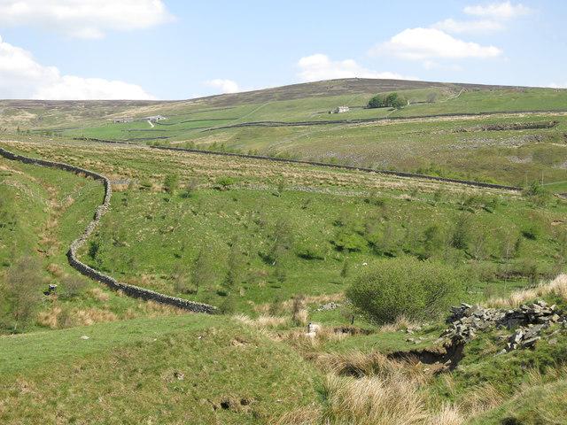 The valley of Wellhope Burn below Blakely Field