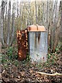 TQ7820 : Abandoned portable toilet, Brede High Woods woodyard by Patrick Roper