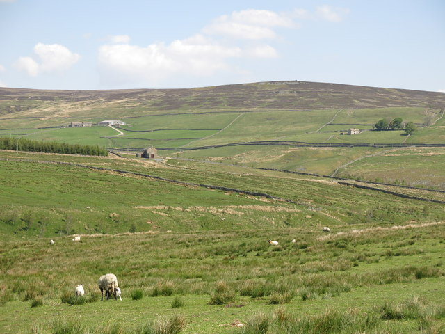 The valley of Wellhope Burn north of South Wellhope