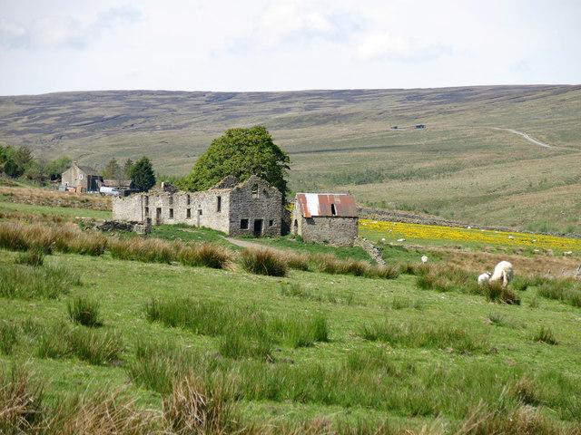 Rough pastures around Whitestone House