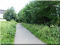 TQ5821 : Cuckoo Trail by PAUL FARMER