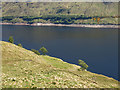 NN3373 : Loch Treig : Week 22