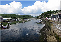 SX2553 : Upstream along the East Looe River, Looe by Jaggery