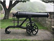 NU0052 : Russian cannon on Berwick ramparts by Jonathan Hutchins