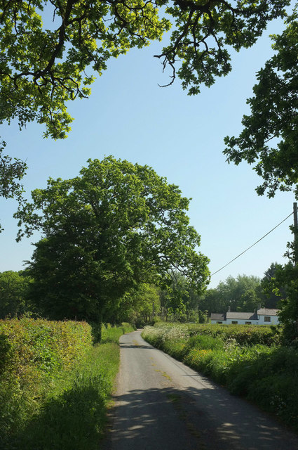 Lane to Waldons Cross