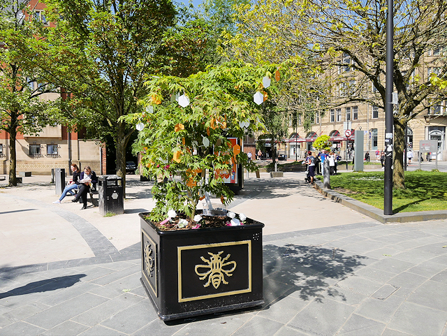 Tree of Hope, Cathedral Gardens