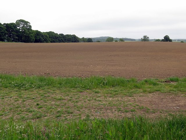 Ploughed field near Broom House