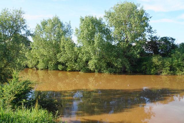The River Severn near Bushley
