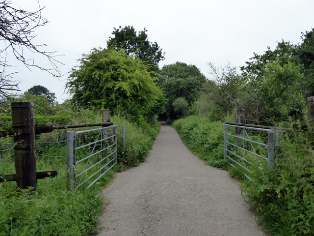 Cuckoo Trail near Hailsham
