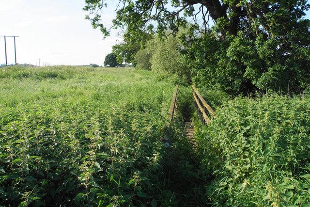 Footbridge on the Severn Way