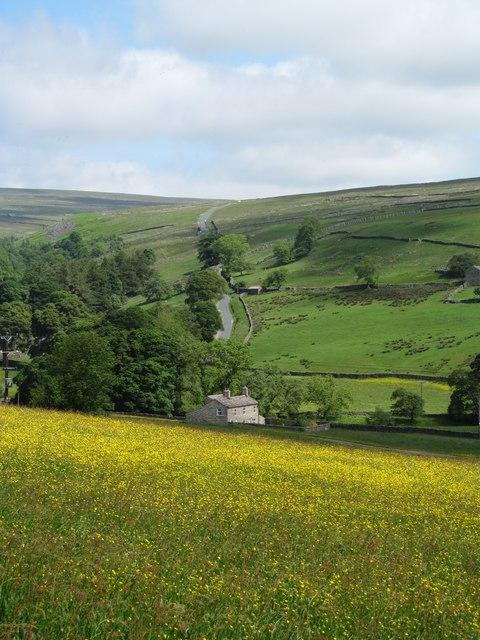 Summer meadow, Arkengarthdale