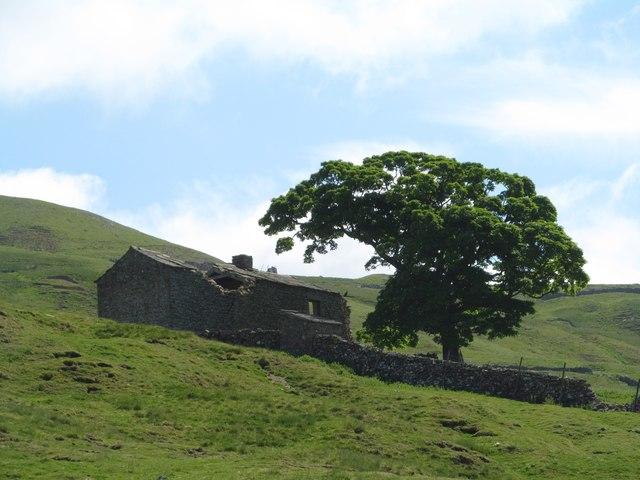 Ruined farm house on the fellside