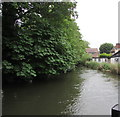 SU4667 : River Kennet, Newbury by Jaggery