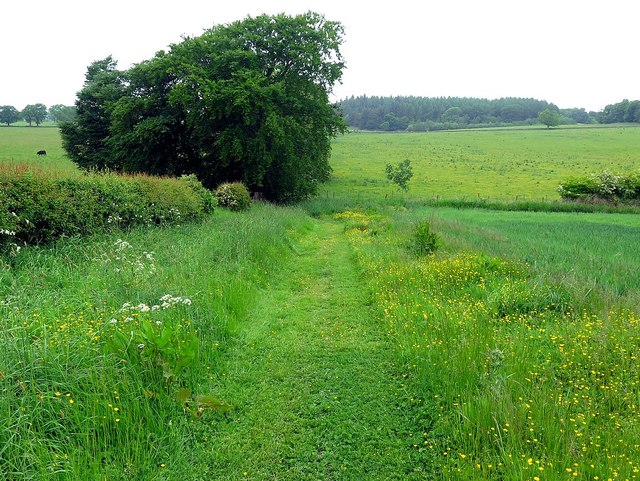 Footpath on Broomhouse Farm